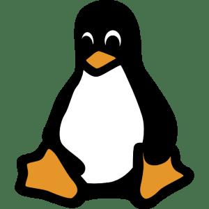 تایپ فاصله مجازی در لینوکس